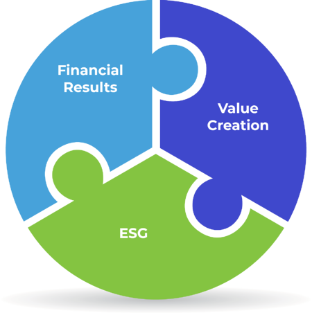 Financial Results Value Creation ESG puzzle image